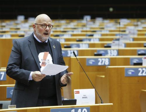 Plenary speech on the New  LGBTIQ Equality Strategy