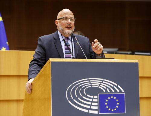 Mon intervention en plénière sur l'égalité de traitement en matière d'emploi et de travail à la lumière de la CNUDPH